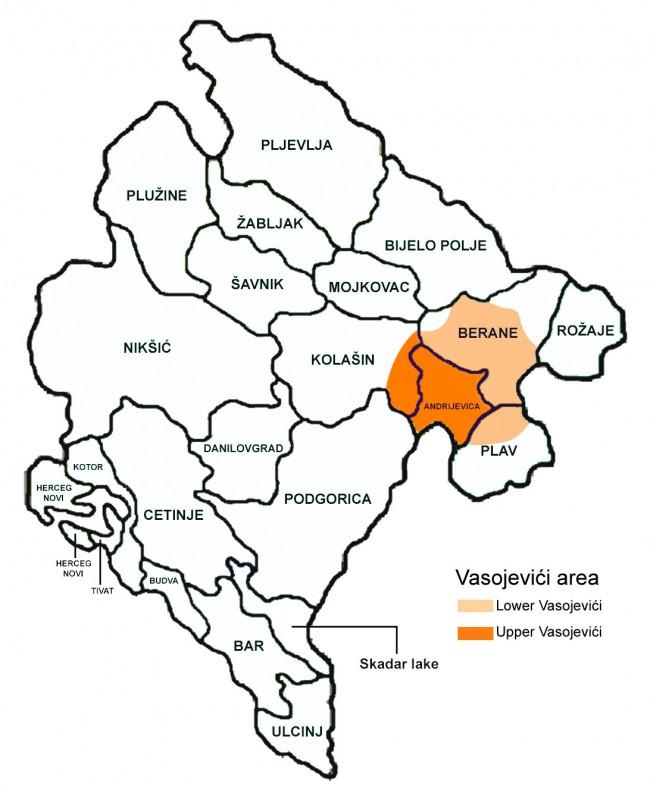 Vasojevići