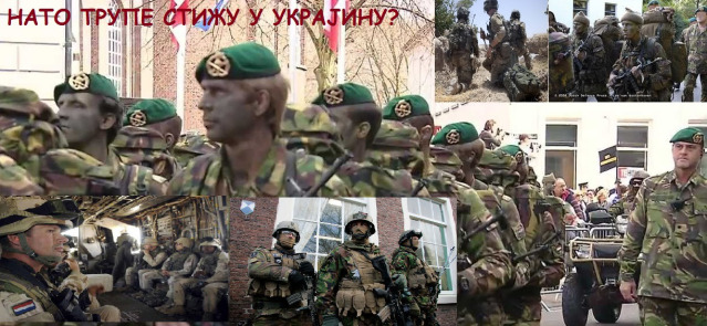 holandske trupe