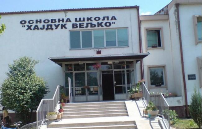 Zajecar Hajduk Veljko