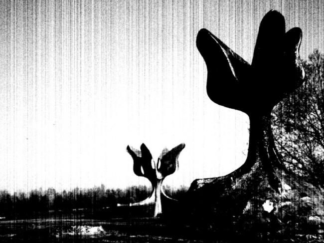 jasenovac.crnapg