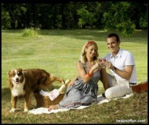 funny_dog_and_human_ma402