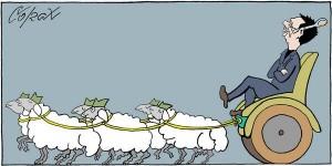 corax-karikatura