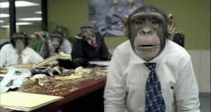majmunska-posla-620x330