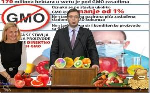 Foto: Geto Srbija pokornostizvoznicimagmo_thumb