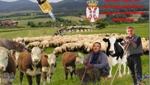 Uništavanje stočnog fonda / foto: Geto Srbija