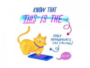 cat-callilng