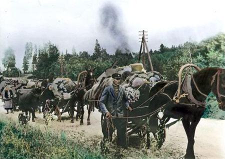 Svabe -bezanje pred Crvenom armijom i partiznima