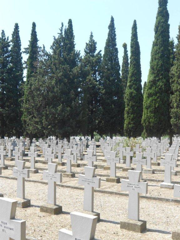 srpsko vojnicko groblje - Koreni